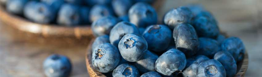 blueberries-good-for-you
